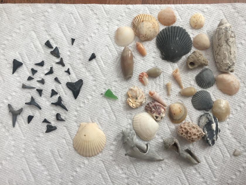 blog treasures