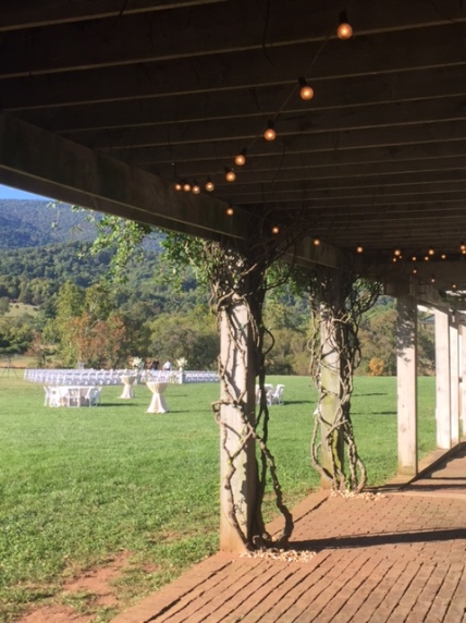 Beautiful day for a wedding...