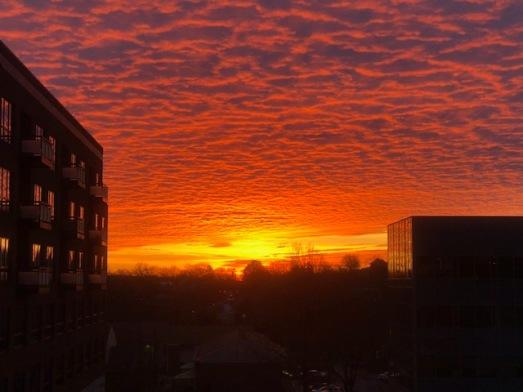 Brilliant sunrise this morning...