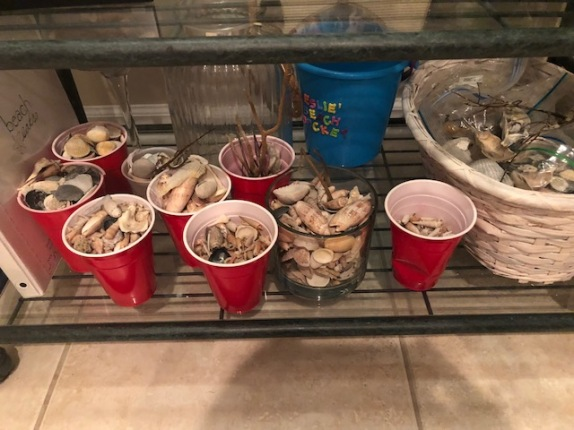 Red Solo Cups of Shells! My treasures!