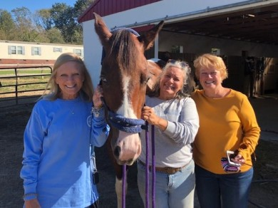 3 sisters and a horse!