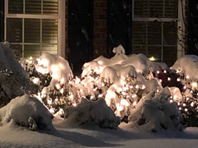 Snow.... and lights!