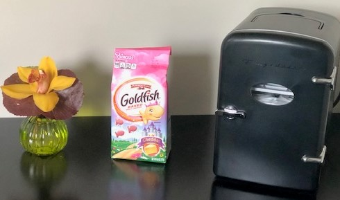 Return to work gifts: flower, PRINCESS Goldfish, and a Retro Can Fridge!