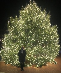 Charlottesville Christmas Tree!