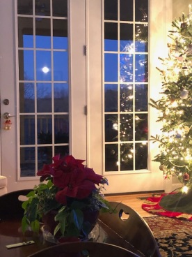 Full moon and a full Christmas tree!