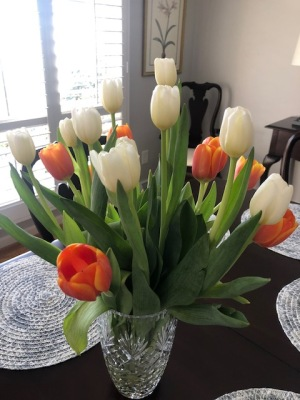 Birthday Tulips!