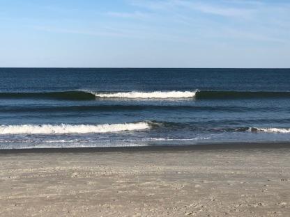 Washed Ashore....