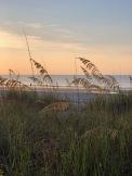 Peace of the beach...